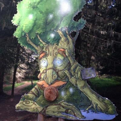 Forêt des elfes