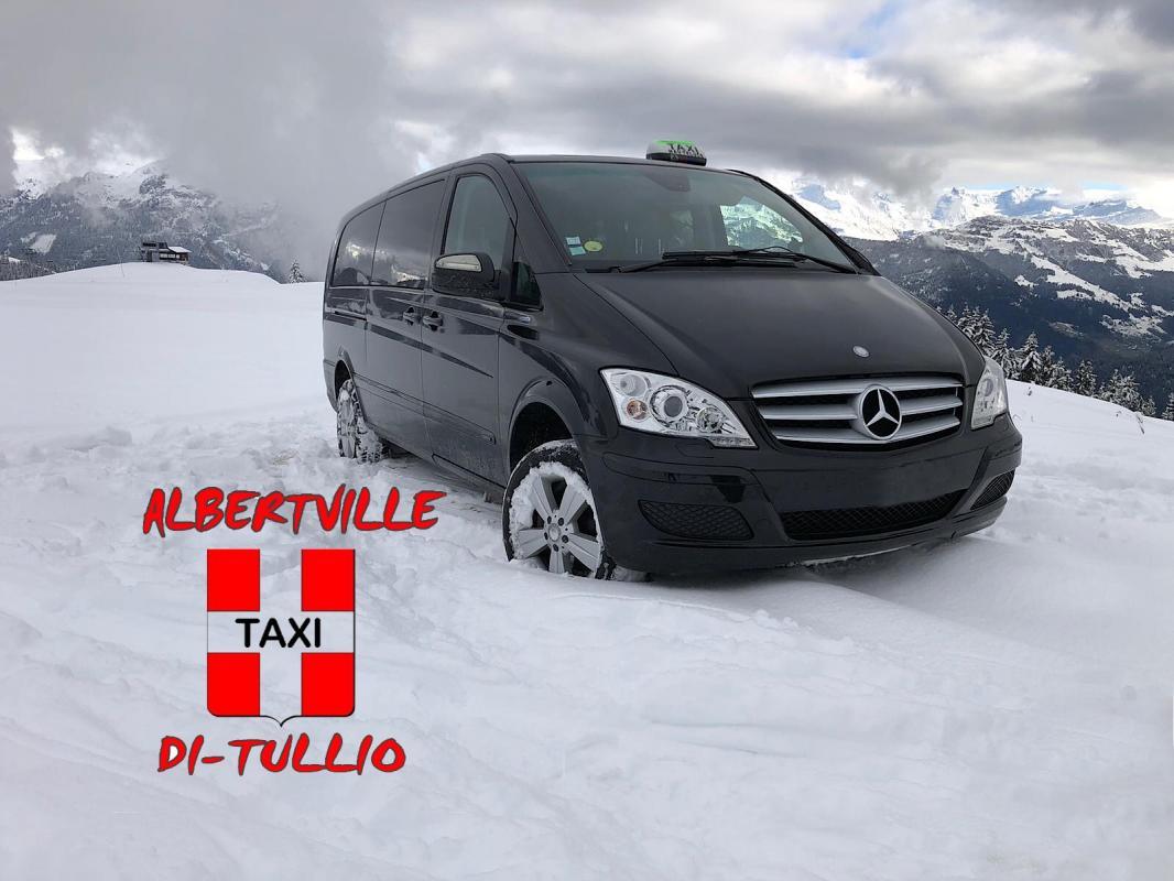 Taxi Di Tullio Van, Minibus.